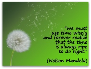 We-must-use-time-wisely-and-forever-realize-that-the-time-is-always-ripe-to-do-right.-Nelson-Mandela